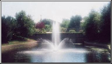 picture of a fountain  taken be Angela Robinson